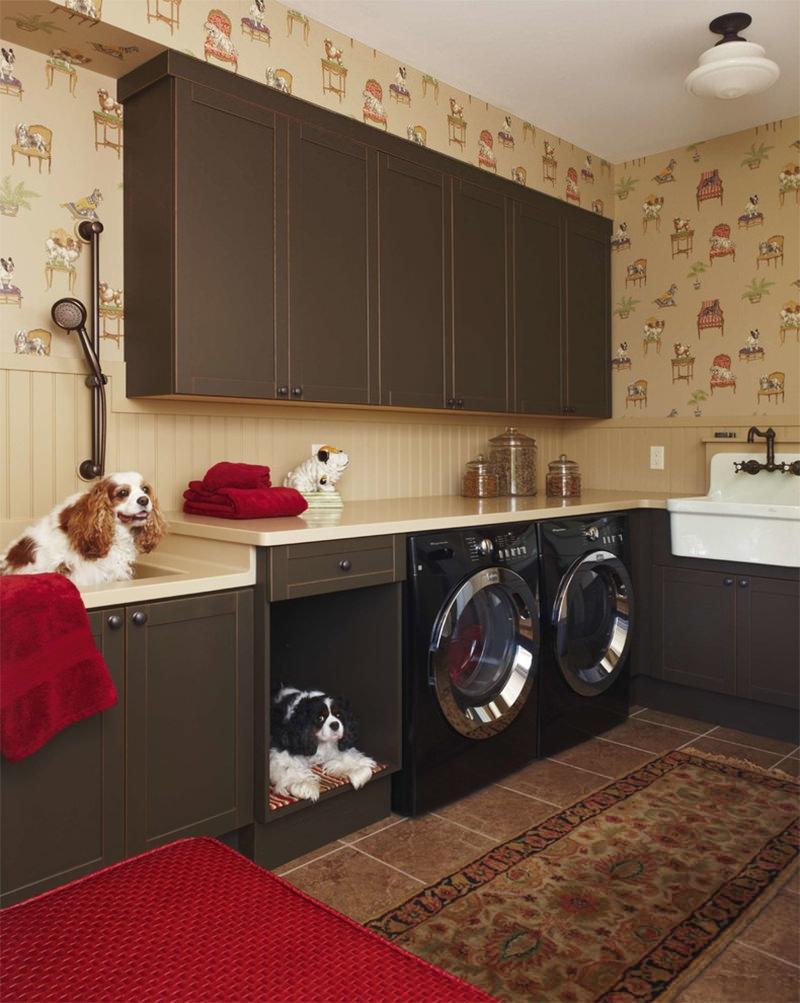 dog shower, lavar cachorro em casa